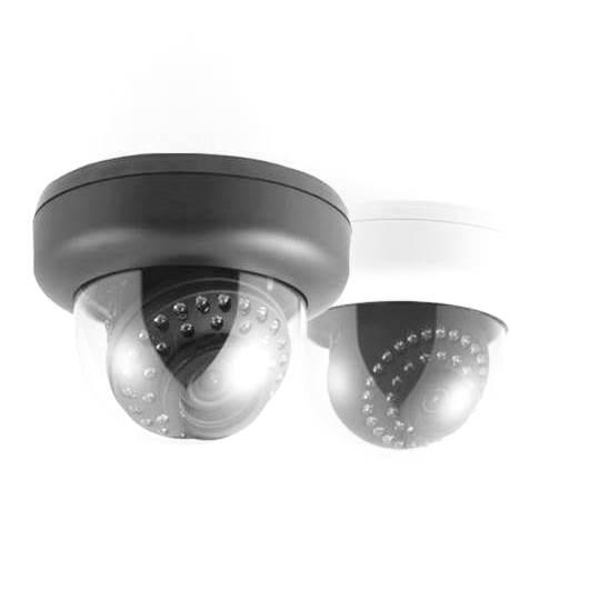IP Network Camera (IPC)